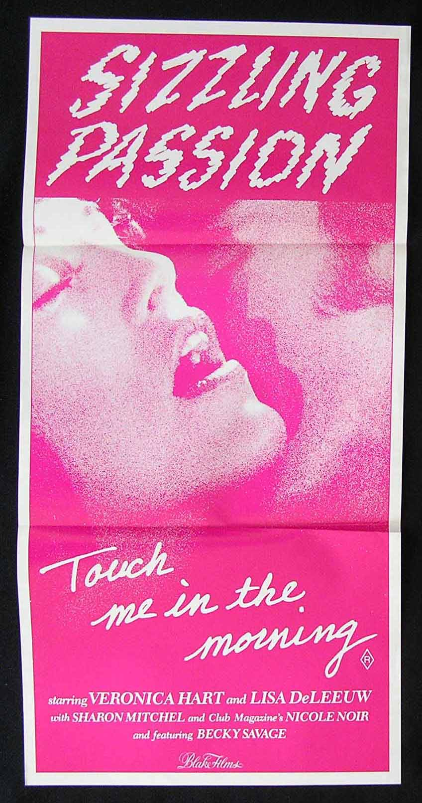 TOUCH ME IN THE MORNING '81 Veronica Hart-Sharon Mitchell Sexploitation Movie Poster