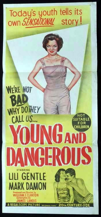 YOUNG AND DANGEROUS Original Daybill Movie Poster Connie Stevens Lili Gentle