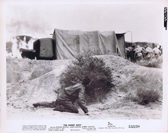THE DESERT RATS 1953 Movie Still Photo 10 Australian Troops at Tobruk