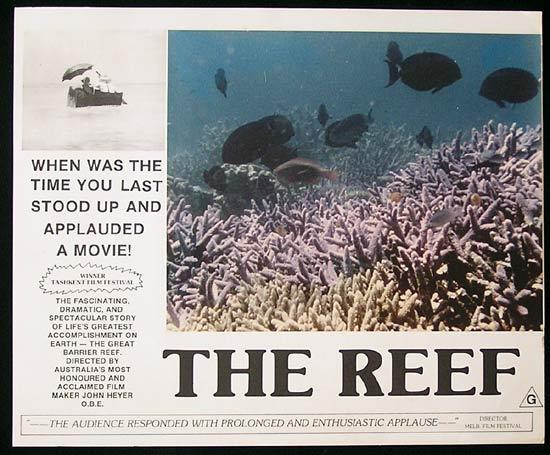THE REEF 1977 John Heyer Documentary GREAT BARRIER REEF Lobby Card 7