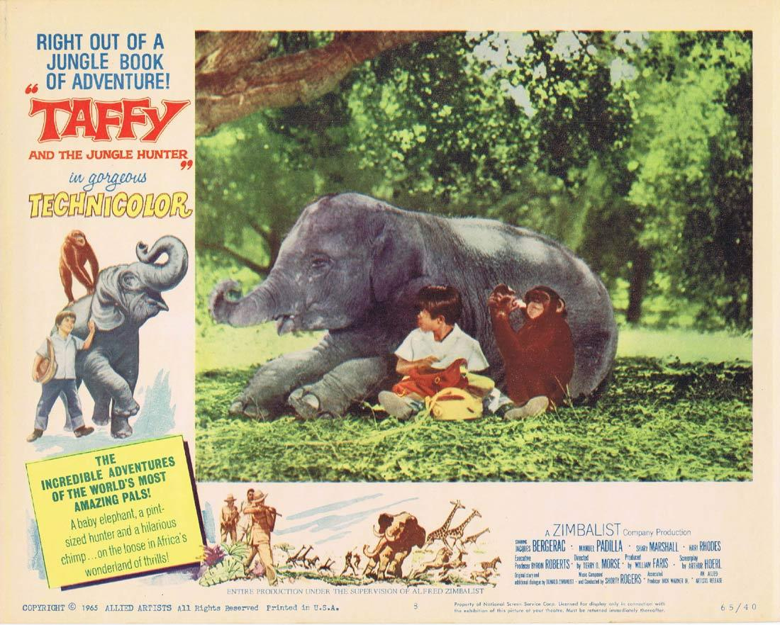TAFFY AND THE JUNGLE HUNTER Lobby Card 8 Baby Elephant Jacques Bergerac