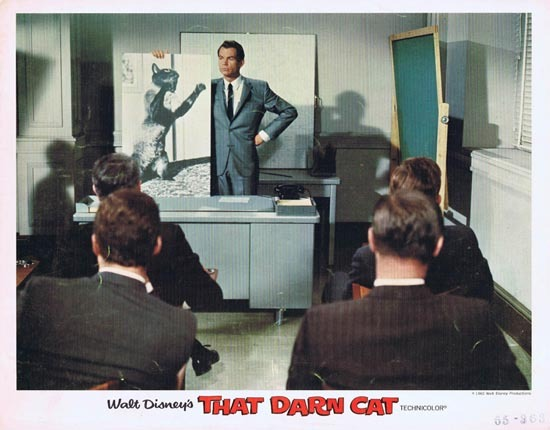 THAT DARN CAT Lobby Card 1965 Disney Dean Jones