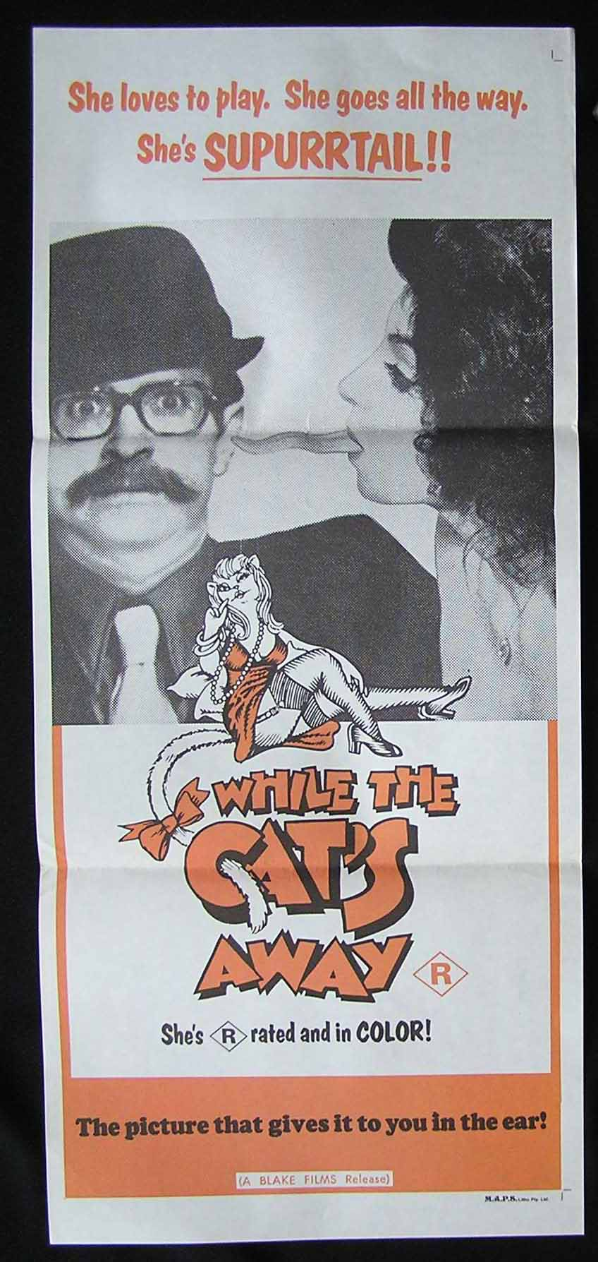 WHILE THE CAT'S AWAY '70s Sexploitation Movie Poster