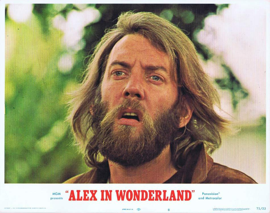 ALEX IN WONDERLAND Lobby Card 8 Donald Sutherland Paul Mazursky