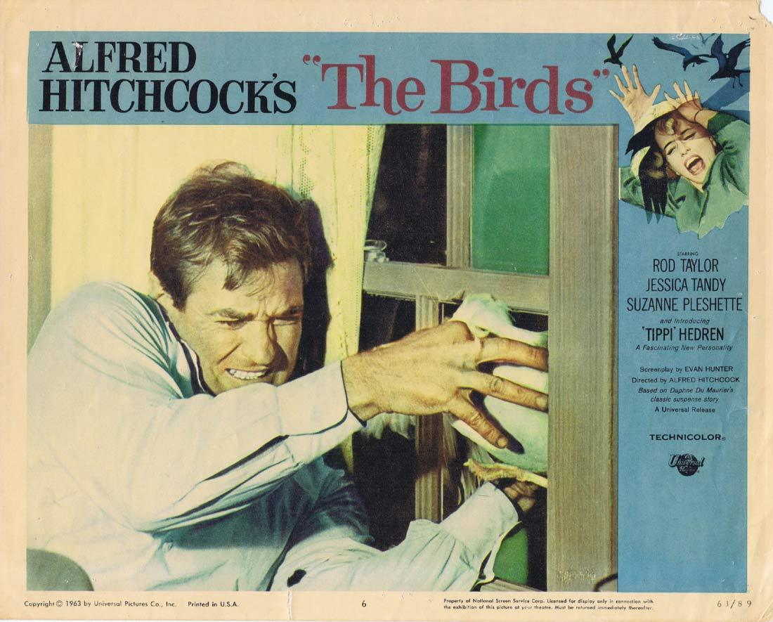 THE BIRDS Original Lobby Card 6 Rod Taylor Tippi Hedren Alffred HItchcock