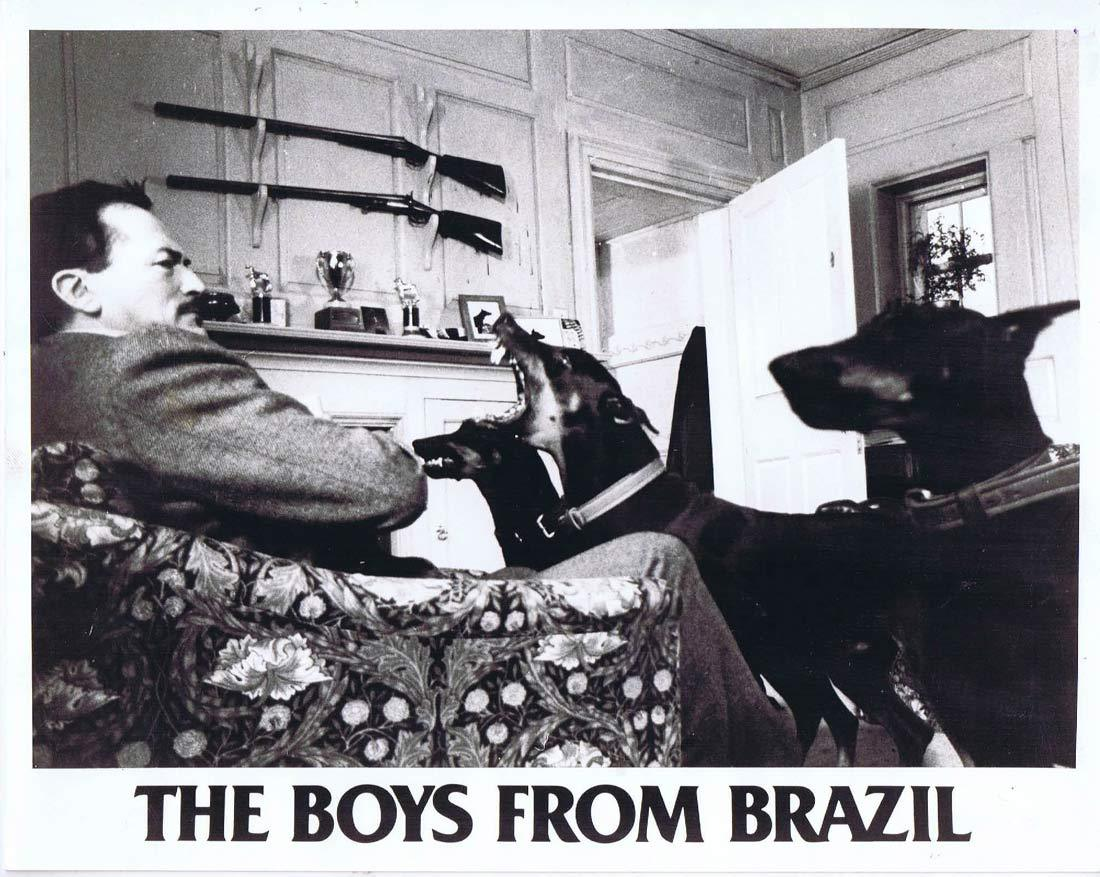THE BOYS FROM BRAZIL Vintage Original Movie Still 1 Gregory Peck Doberman