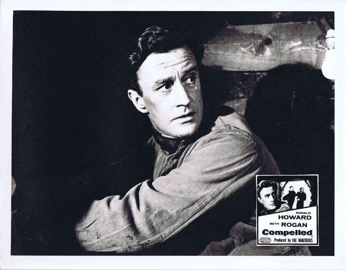 COMPELLED Original Australian Lobby Card 3 Ronald Howard Beth Rogan