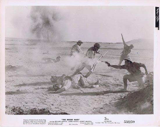 THE DESERT RATS 1953 Movie Still Photo 7 Robert Wise Anzac Troops Tobruk