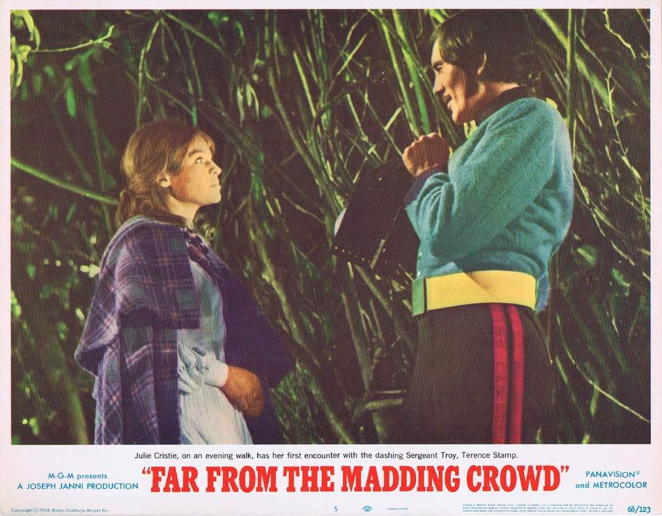 FAR FROM THE MADDING CROWD Lobby Card 5 Julie Christie Terence Stamp