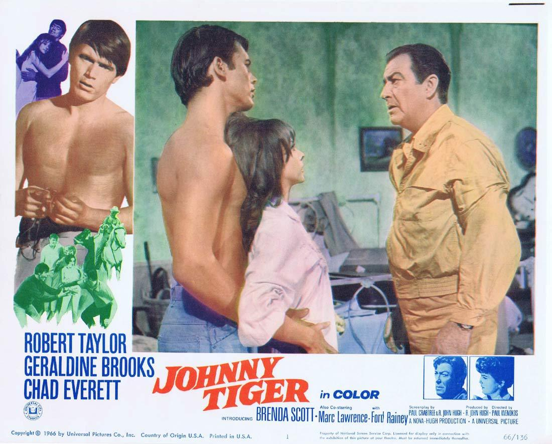 JOHNNY TIGER Lobby Card 1 Robert Taylor Geraldine Brooks