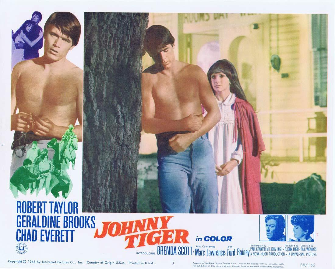JOHNNY TIGER Lobby Card 3 Robert Taylor Geraldine Brooks