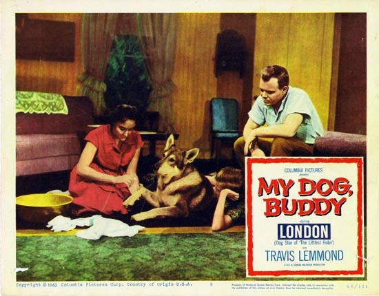 MY DOG BUDDY 1960 US Lobby card 8 London Littlest Hobo
