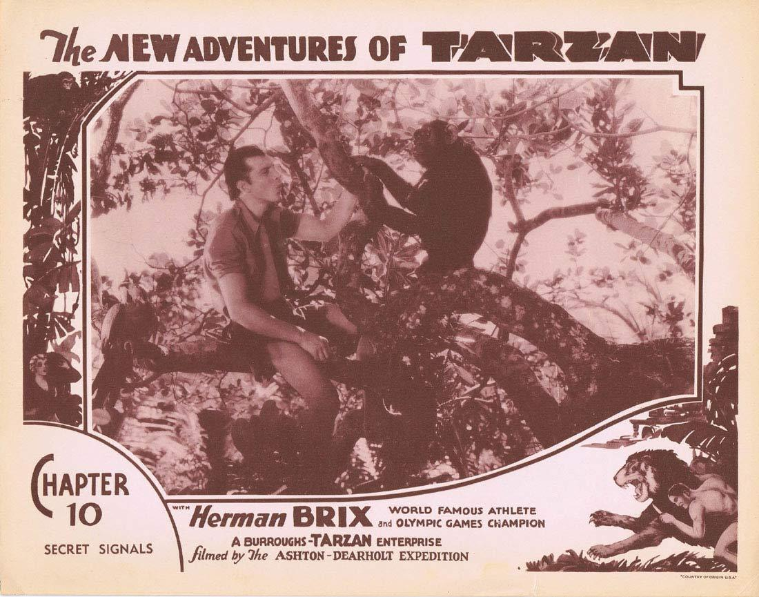 THE NEW ADVENTURES OF TARZAN Chapter 10 Lobby Card 5 Herman Brix Vintage Serial 1935