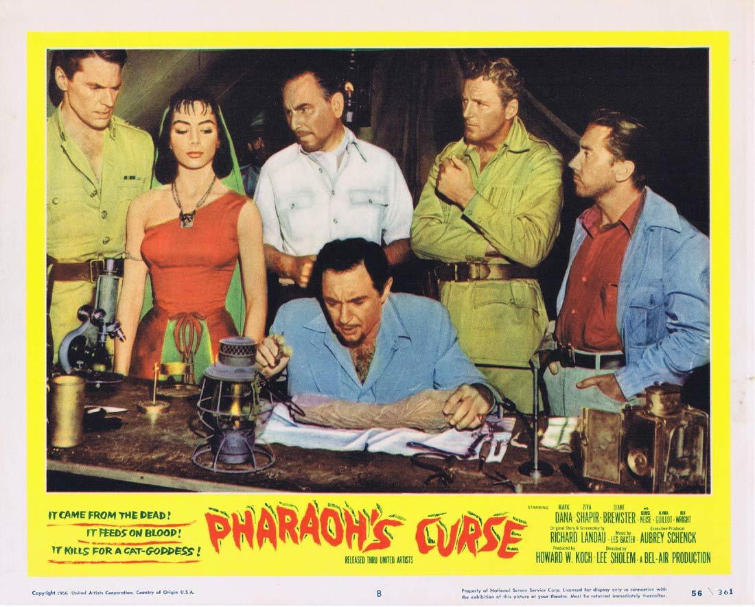 PHARAOHS CURSE Lobby Card 8 Egypt Cat Goddess Mummy
