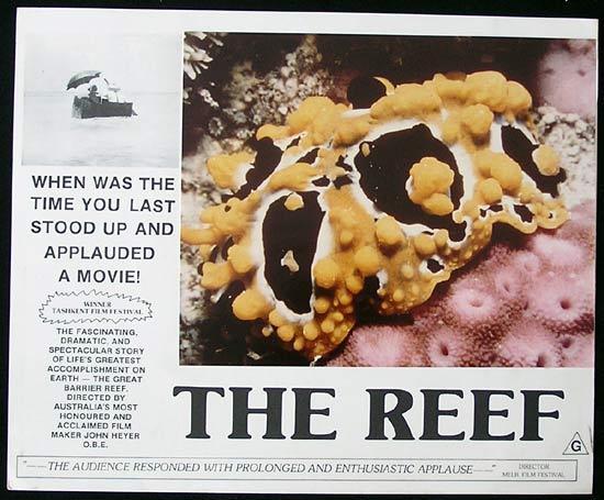 THE REEF 1977 John Heyer Documentary GREAT BARRIER REEF Lobby Card 4