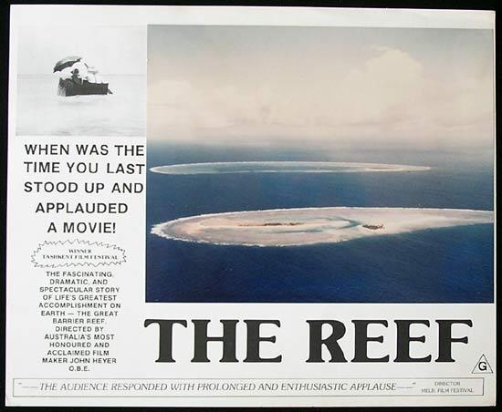 THE REEF 1977 John Heyer Documentary GREAT BARRIER REEF Lobby Card 8