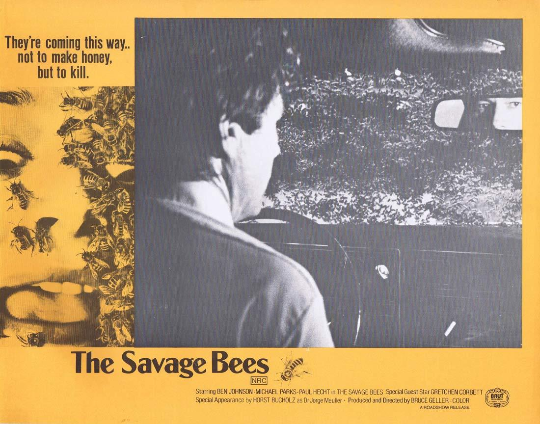 THE SAVAGE BEES Rare Australian Lobby Card 1 Ben Johnson Michael Parks