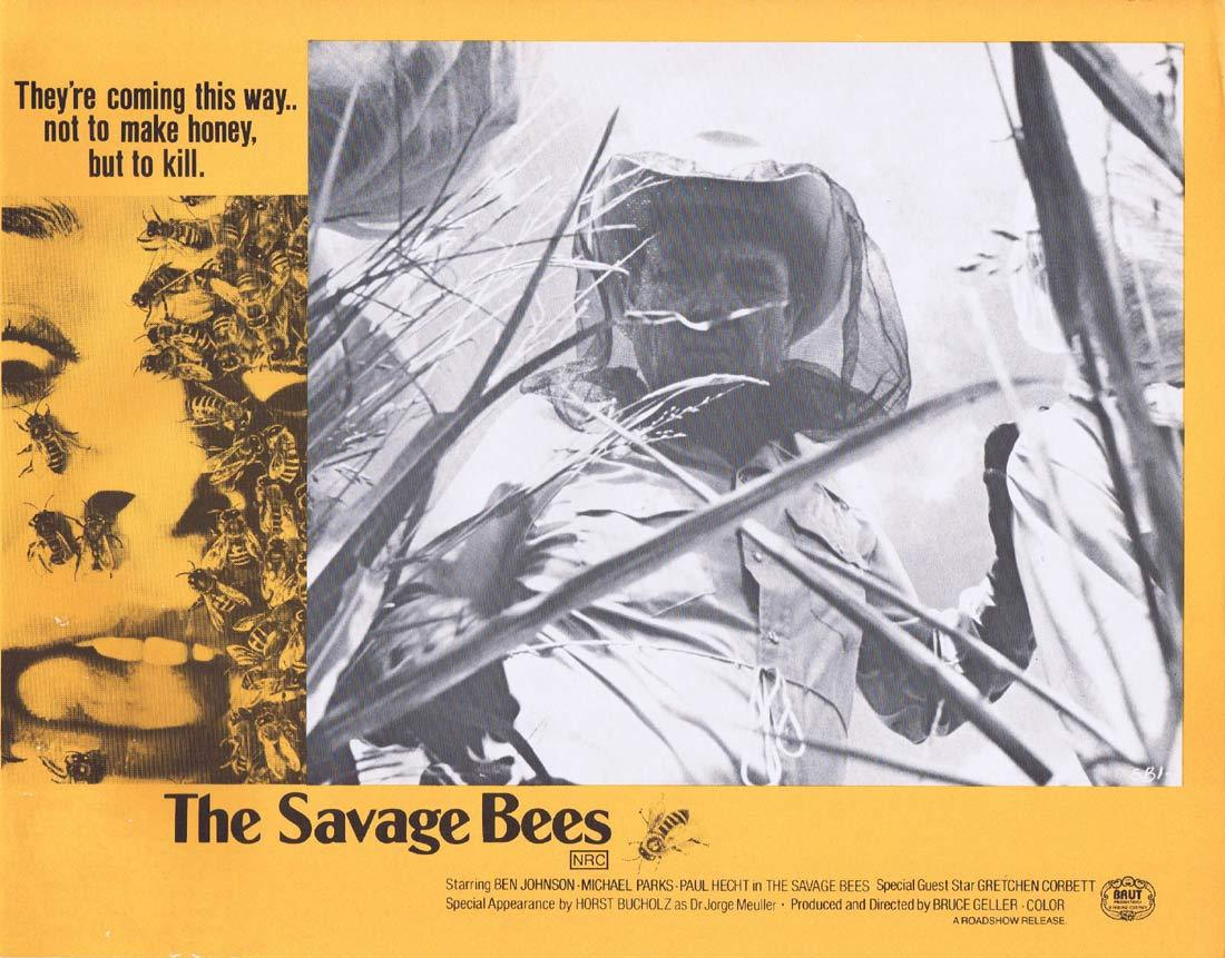 THE SAVAGE BEES Rare Australian Lobby Card 3 Ben Johnson Michael Parks