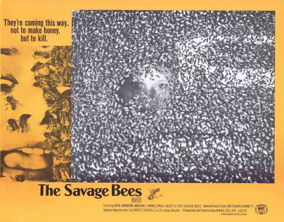 THE SAVAGE BEES Rare Australian Lobby Card 4 Ben Johnson Michael Parks