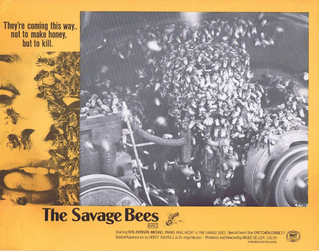 THE SAVAGE BEES Rare Australian Lobby Card 5 Ben Johnson Michael Parks