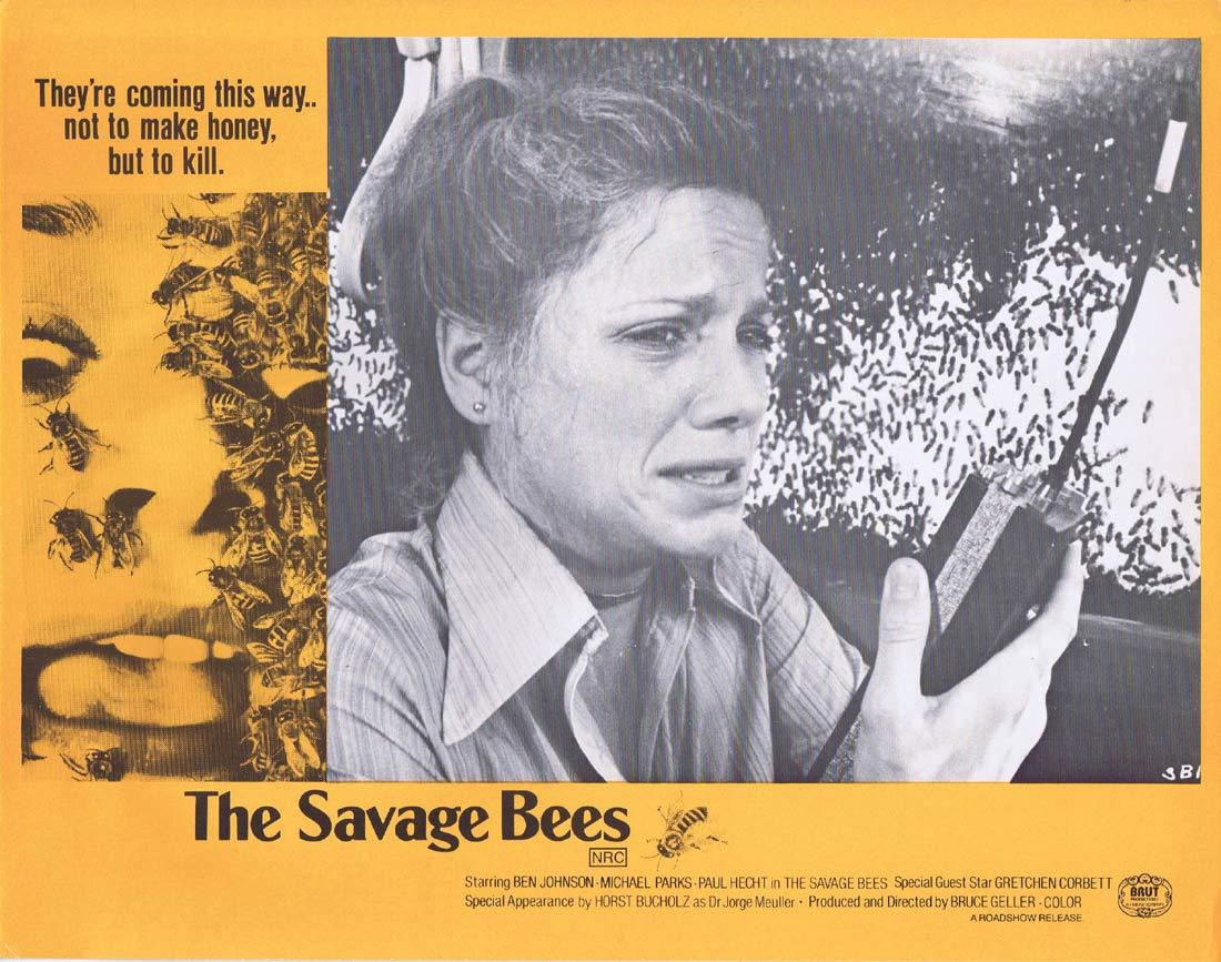 THE SAVAGE BEES Rare Australian Lobby Card 6 Ben Johnson Michael Parks