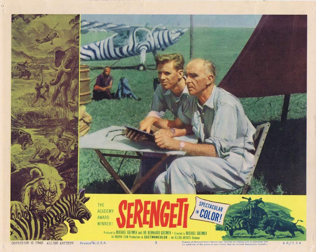 SERENGETI Lobby Card 3 Bernhard Grzimek Documentary Africa Academy Award winner