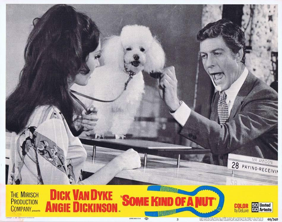 SOME KIND OF A NUT Lobby Card 3 Dick Van Dyke Angie Dickinson Rosemary Forsyth