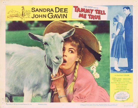 TAMMY TELL ME TRUE 1961 Sandra Dee Lobby Card 2 Goat