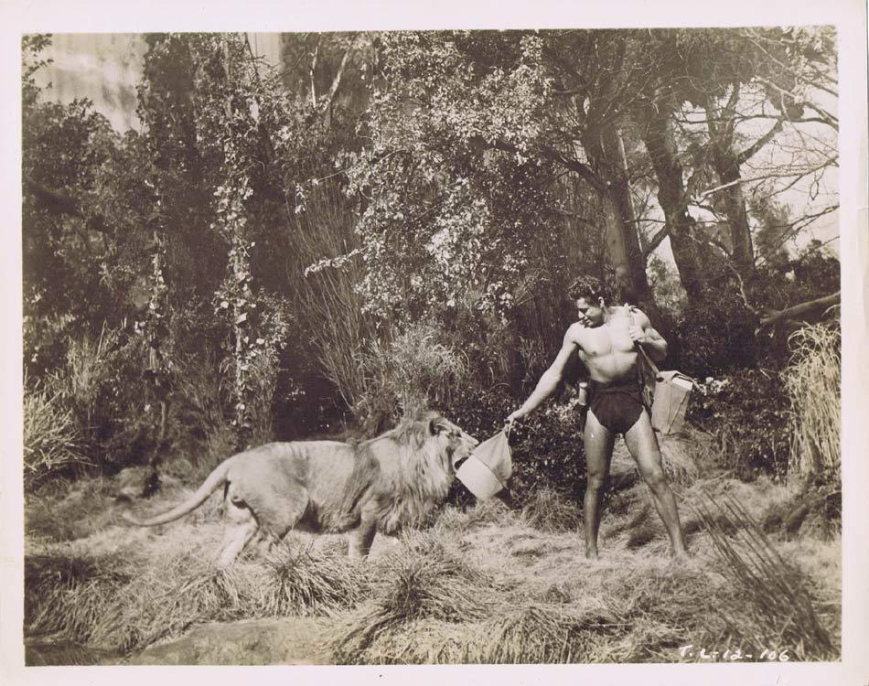 TARZAN AND THE LOST SAFARI Vintage Movie Still 12 Gordon Scott & King of the Beasts