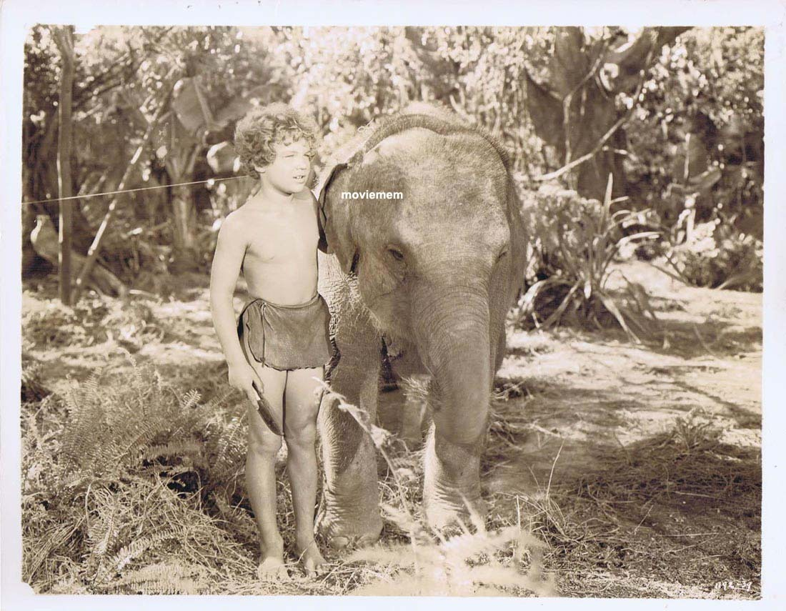 TARZAN'S SECRET TREASURE Movie Still 33 Johnny Sheffield with elephant