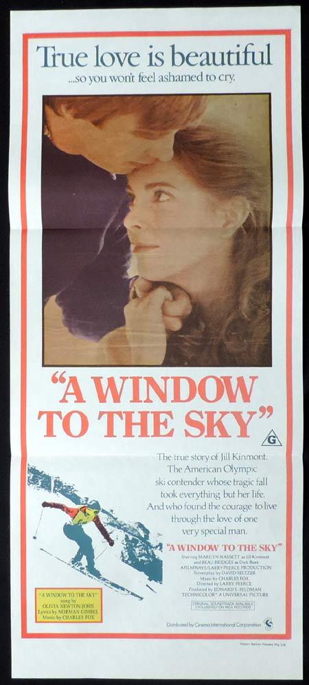 THE OTHER SIDE OF THE MOUNTAIN Original Daybill Movie Poster A Window to the Sky