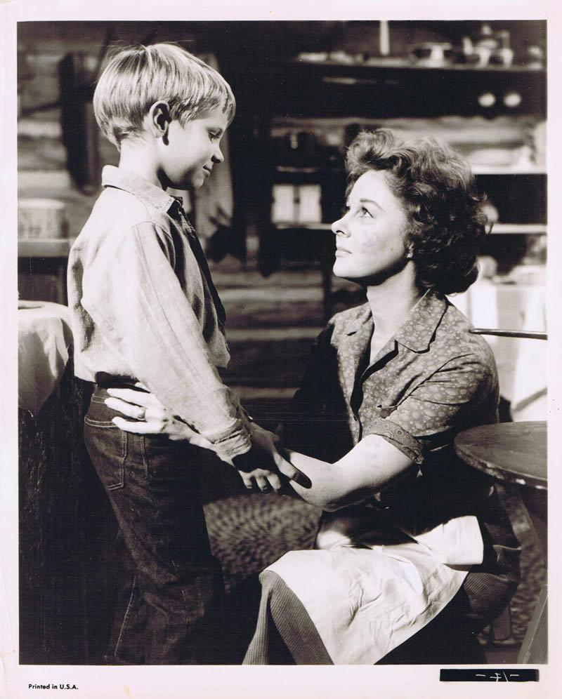 WOMAN OBSESSED Vintage Movie Still 18 Susan Hayward Stephen Boyd