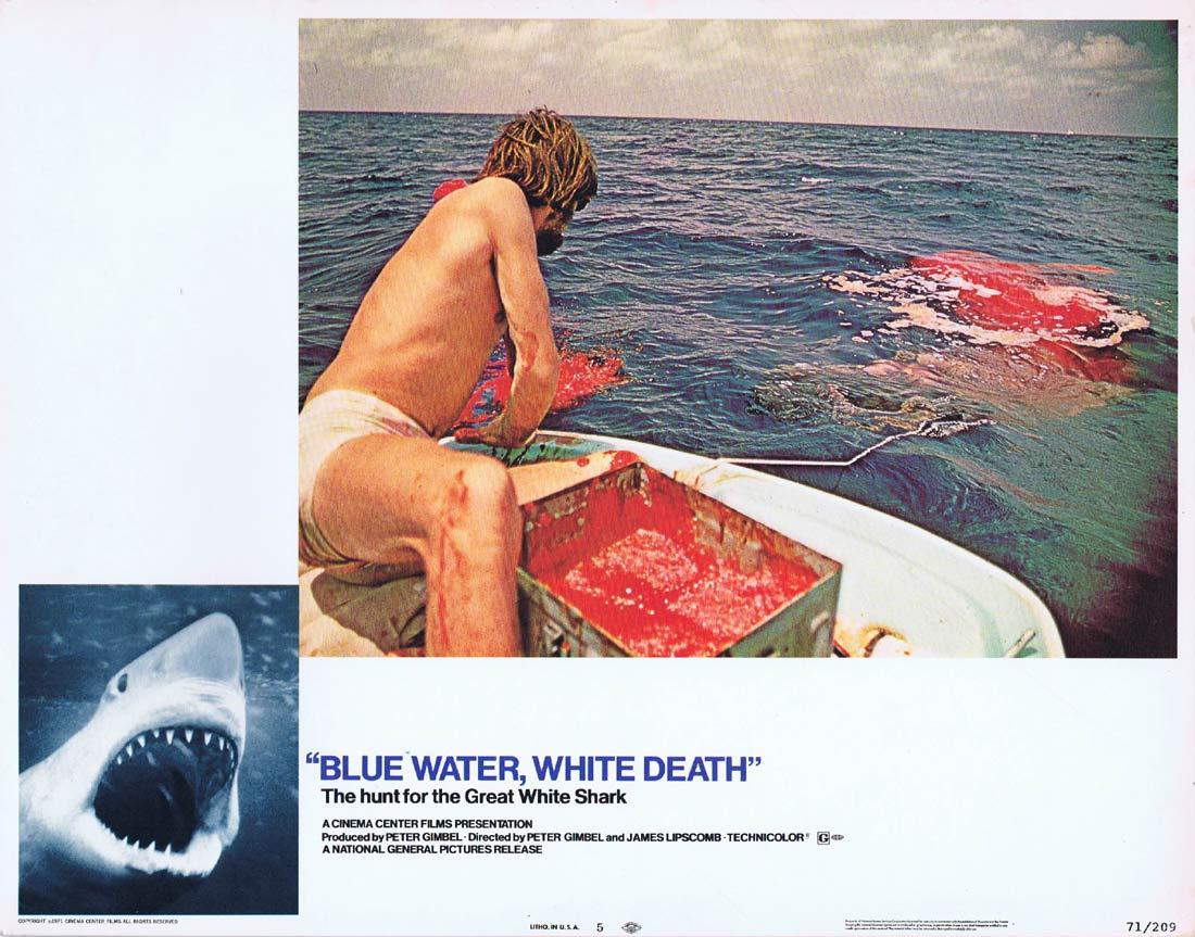 BLUE WATER WHITE DEATH Original Lobby Card 5 Great White Shark