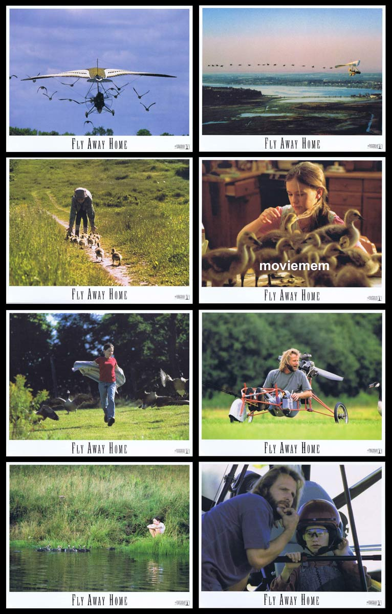 FLY AWAY HOME Original Lobby Card Set Jeff Daniels Anna Paquin Dana Delany